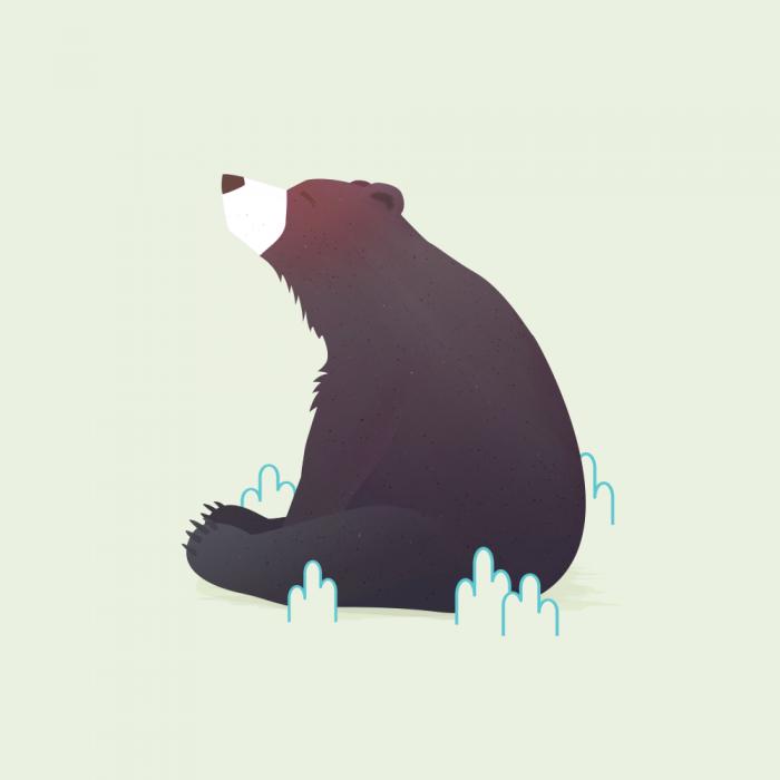 Animal Minis - Bear